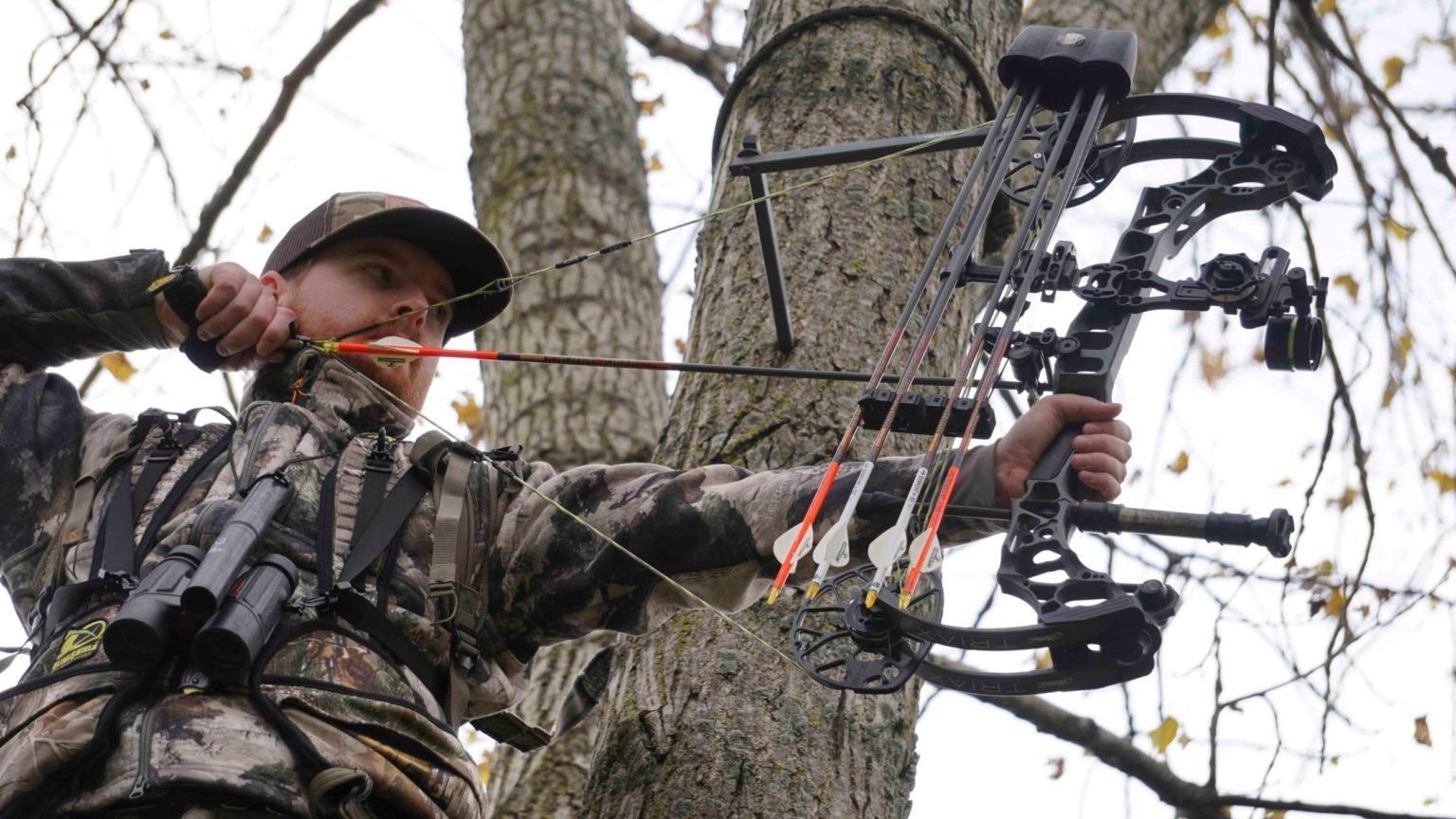 Understanding Compound Bows