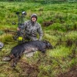 N/a Wild Pig In Northern California By Austin Caldwell